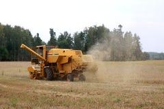 Harvesting of grain Stock Image