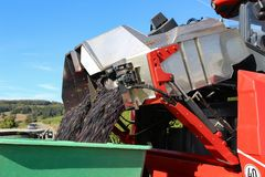 Harvesting grapes by a combine harvester. The vineyard / Harvesting grapes by a combine harvester Stock Photos