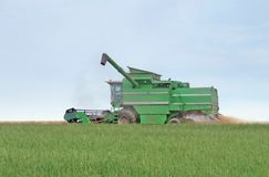 Harvesting harvester on a crop field Royalty Free Stock Photo