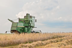 Harvesting. Harvester to harvest in a field Stock Photo