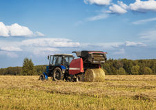 Harvesting hay in a field Royalty Free Stock Image