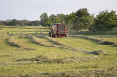 Harvesting the hay Royalty Free Stock Photos