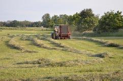 Harvesting the hay Royalty Free Stock Photos