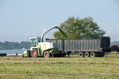 Harvesting the Hay Royalty Free Stock Photo