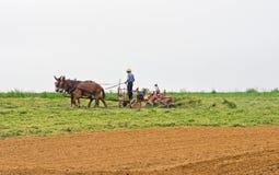 Harvesting Hay Stock Photos