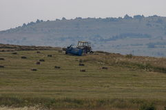 Harvesting hay tractor work on field make haystacks, Plana mountain Royalty Free Stock Photo