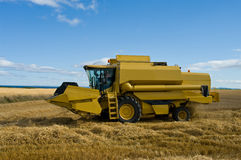 Harvesting Crops Royalty Free Stock Photo