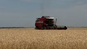 Harvesting machine in the fields stock footage