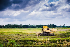Harvesting machine at padi field Royalty Free Stock Images