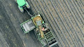 Harvesting machinery complex is riding a potato field in a view from above
