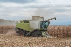 Harvesting of maize grain. On cloudy sky background Stock Photos