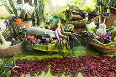 Harvesting many fresh vegetables and fruits and Homegrown vegetable. For show and sale for thai people in Vegetable and Flora Festival at Nonthaburi, Thailand Royalty Free Stock Photos