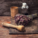 Harvesting of medicinal herbs Stock Image