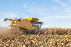 Harvesting a Midwest corn crop Stock Images
