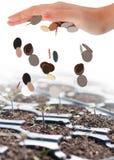 Harvesting money Royalty Free Stock Image