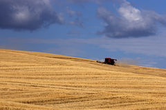 Harvesting on the Palouse Royalty Free Stock Photos