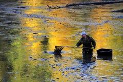 Harvesting pond Stock Photo