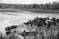 Harvesting pond stock images