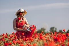 Harvesting poppy. Young woman harvesting poppy in a poppy field Royalty Free Stock Photos
