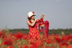 Harvesting poppy Stock Image