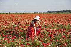 Harvesting poppy Stock Photography