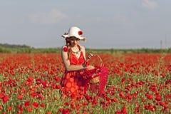 Harvesting poppy. Young woman harvesting poppy in a poppy field Stock Image