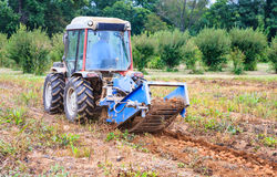 Harvesting Potatoes on Farm in Virginia Royalty Free Stock Images