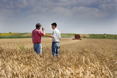Harvesting. Proud peasant and businessman talking on wheat field during harvesting Stock Photography