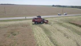 Harvesting rapeseed stock footage
