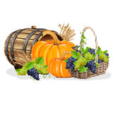 Harvesting realistic still life Stock Images