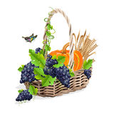 Harvesting realistic still life Royalty Free Stock Images