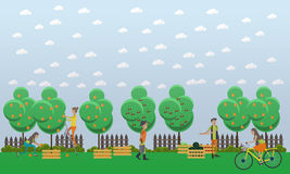 Harvesting and realization concept vector illustration in flat style. Royalty Free Stock Image