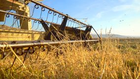 Combine collecting the crops stock photo