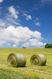 Harvesting rolls hay. Tractor harvesting rolls grass in the agricultural landscape Royalty Free Stock Photo