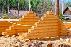 Harvesting roof for log houses from round timber Royalty Free Stock Photography