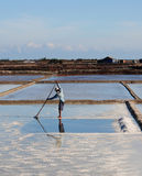 Harvesting salt in salt fields in Nha Trang, Vietnam Stock Photos