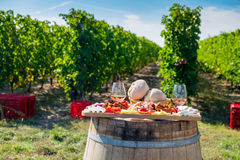 Harvesting season traditional Romanian food plate with cheese, b. Read, sausages, onions and red wine in glass in vineyards stock photo
