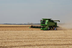 Harvesting soy beans Royalty Free Stock Photography