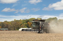 Harvesting Soybean Crop Stock Photo