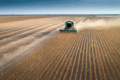 Harvesting of soybean Stock Images