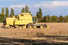 Harvesting of soybean field with combine harvester. Royalty Free Stock Photography