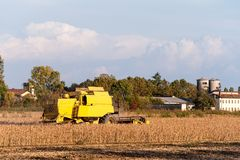 Harvesting of soybean field with combine harvester. Stock Photo