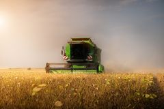 Harvesting of soybean field with combine Royalty Free Stock Photos