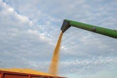 Harvesting of soybean Stock Photo