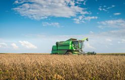 Harvesting soybean Stock Images