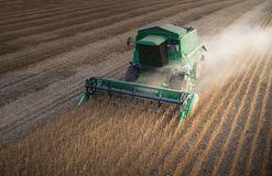 Harvesting  soybean Royalty Free Stock Image