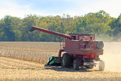 Harvesting Soybeans. Red farm combine harvesting a soybean crop Royalty Free Stock Images