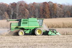 Harvesting Soybeans royalty free stock photo