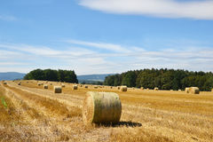 Harvesting of straw. Royalty Free Stock Photography