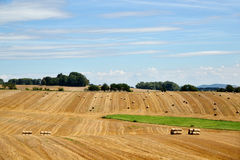 Harvesting of straw. Stock Images